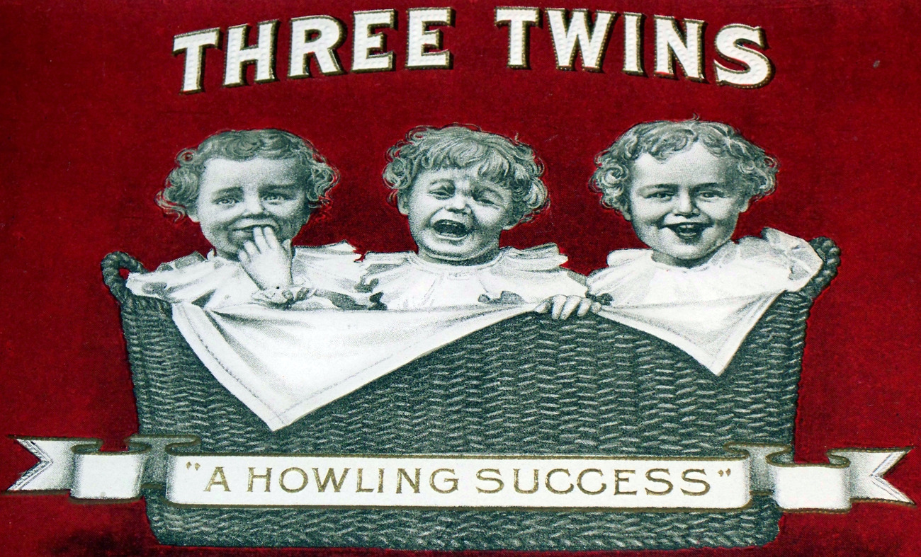 Three twins inner cigar label 003