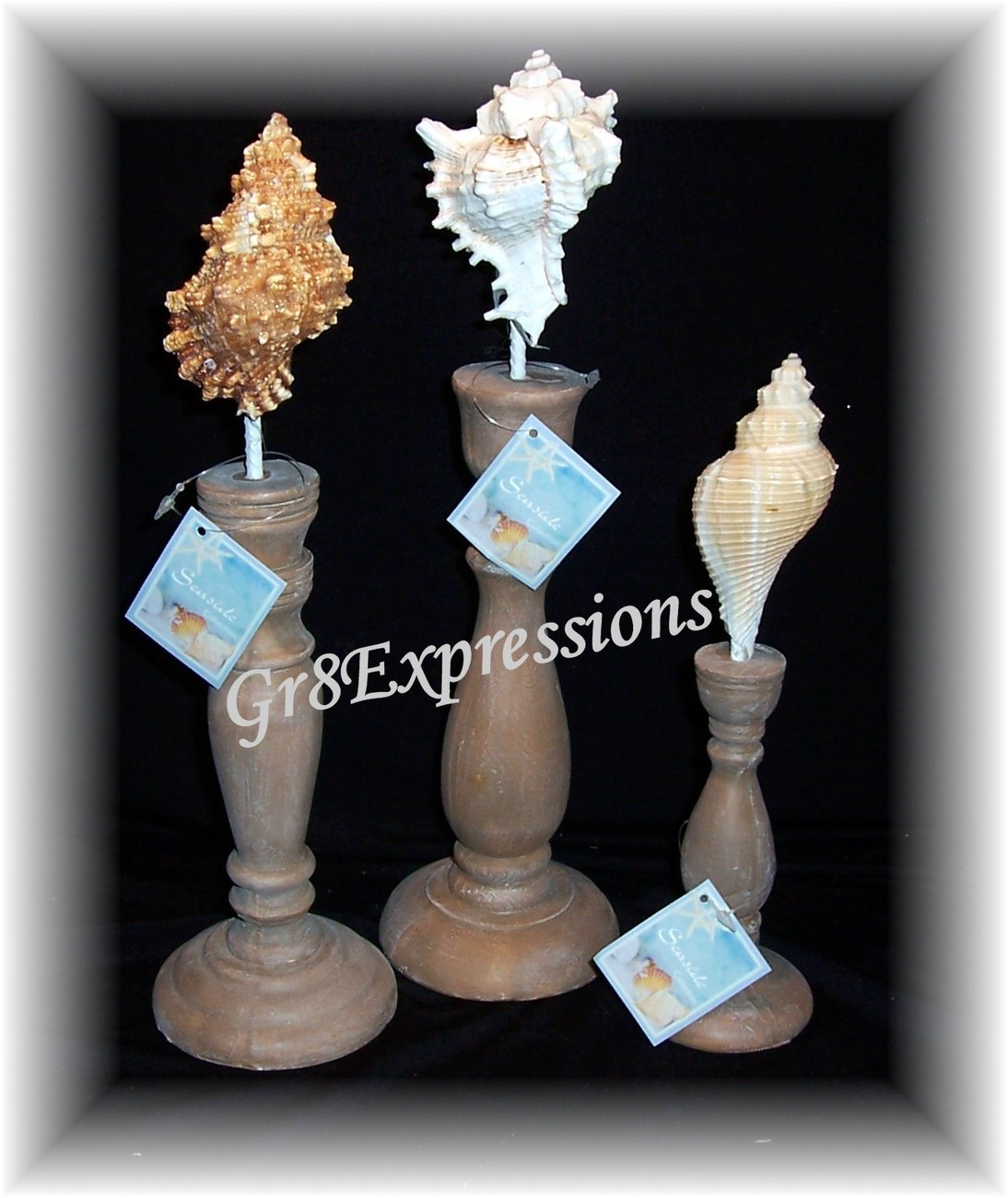 3 sea shell finials a