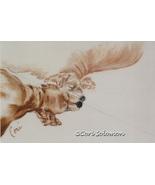 Cocker Spaniel Dog Art Pastel Drawing Solomon - $198.00