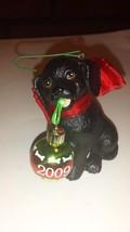 Ornament Black Puppy w/Ornament 2009 w/Box American Greetings Pet - $8.85