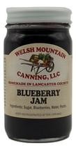 BLUEBERRY JAM - 100% Natural 1, 3, 6,12 Lot Fresh Fruit Spread Amish Hom... - $5.91+