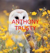 "ANTHONY TRUSTY ""OWL COLOR #1 "" FINE ART PHOTOGRAPH PRFESSIONAL PRINT SHOP  - $11.99"