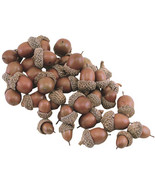 Resign Acorns, Nuts 40/Pkg. Crafts projects Fall Holiday Decor  - $23.00