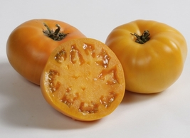200 Seeds Rare Brandywine YELLOW Tomato Heirloom Beefsteak Bulk Rare oz - $13.79