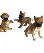 Vintage Boxer Dog 3 Figurines 1-Ear Leg Tail Bandage 1 Napco 1-Japan rep... - $19.95