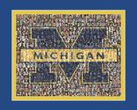 Michigan thumb155 crop