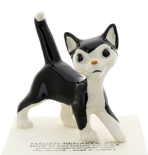 Tuxedo cat5