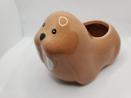 Walrus Animal Planter Grow Kit, ceramic pot with soil and mint herb seeds image 6