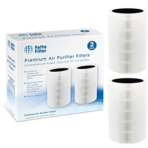 Fette Filter - 2 Combination Particle & Carbon Filter Replacements Compatible wi