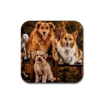 Cute Sweet Puppy Puppies Dogs Pet Animal (Square) Rubber Coaster - $2.99