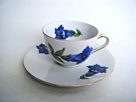 Seltmann Weiden Bavaria Demitasse Cup & Saucer Berchtesgaden Blue Flower... - $14.80
