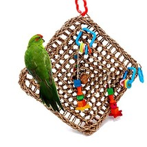 Borangs Bird Foragaing Toys Parrot Seagrass Activity Wall Birds Toy for ... - $30.52 CAD