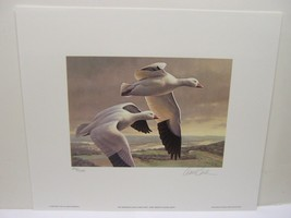Minnesota 1991 Duck Stamp Daniel Smith Ducks Unlimited Signed with Stamp... - $39.59
