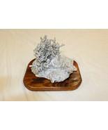 Dansha Farms Ant Hill Art, Aluminum Casting Sculpture. Fire Ants #525 - $188.09