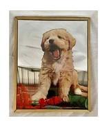 Vintage puppy mirror - $13.86