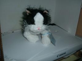 Ganz  WebkinzBlack &White Cat HMo16 with code - $3.95