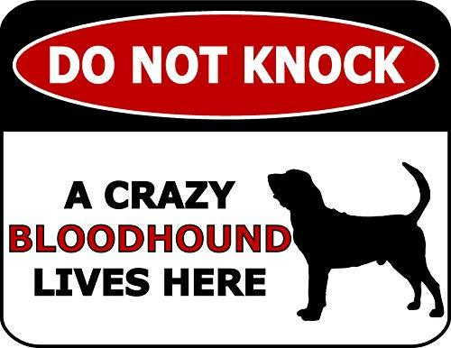 Primary image for Top Shelf Novelties Do Not Knock A Crazy Bloodhound Lives Here (Silhoutte) Lamin