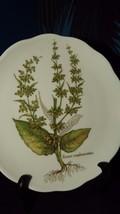 Vohenstrauss Johann Seltmann Bavaria Germany Salad Plate Rumex Conglomer... - $9.50