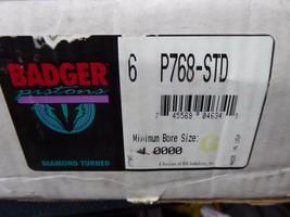 BADGER Piston Kit P768-STD Pack Of 6 image 2