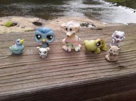 7 Littlest Pet Shop & Other Figurines   -5 - $7.92