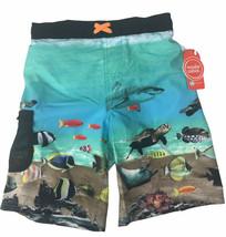 Wondernation Boys Swim Trunks M 8 Ocean Fish Turtle Shark Meshliner - $9.49
