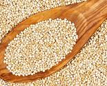 S l16003333 thumb155 crop