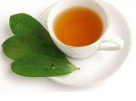 Pure Organic Soursop/graviola/guanabana/Annona/Muricata Leaf Tea Bags Sr... - $1.97+