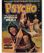 Psycho #7 Asylum Of Frozen Hell Macabre Tales Horror - $4.95