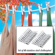 Stainless Steel Clothespins - Set of 40  - $9.80
