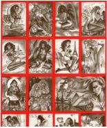 Paresi's Fantasy VAMPIRES & VIXENS w/all CHASE cards ! - $19.96