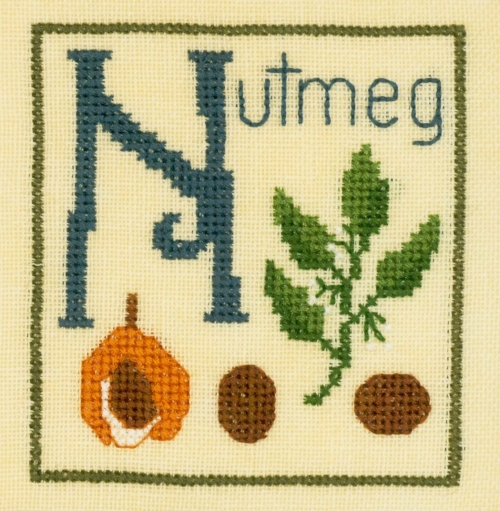 Primary image for N is for Nutmeg SC25 mini cross stitch chart Elizabeth's Designs