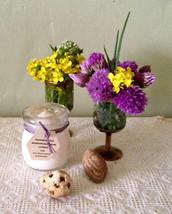 Buffalo Tallow Cream Balm 2.5oz Red Clover Oil Squalane CoQ10 Honey Eczema Psori - $32.99