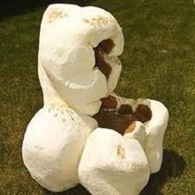 35 Mayan Giant White Corn Seeds-1246 - $3.98