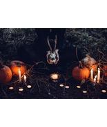 Standard Ceremonial Ritual - Bargain With Pagan Gods for Power! Full Ritual - $299.99