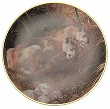 Bradford Exchange Cougar plate - Shadows in the Grass by Carl Brenders - A Famil - $38.22