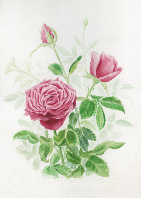 Primary image for Three Red Roses, A. Rose Designs note card