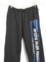 Jansport Men's Warm Sweatpants Size L Dark Gray Workout Athletic Slacks - $28.48