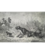 HUNTING Panthers in Algeria - 1878 Fine Quality Print - $35.96