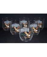 Set of 6 Vintage Bald Eagle American Wildlife On The Rocks Bar Glasses EX - $14.00