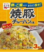 Nagatanien Seasoning mix for Roast Pork Fried Rice 10bag (3pack/bag) Fre... - $24.34