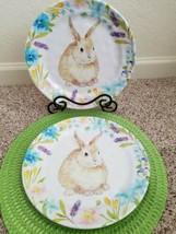 "~2 COTTONTAIL LANE Bunny Rabbit Spring Flowers Melamine 11"" Dinner Plates - $24.70"