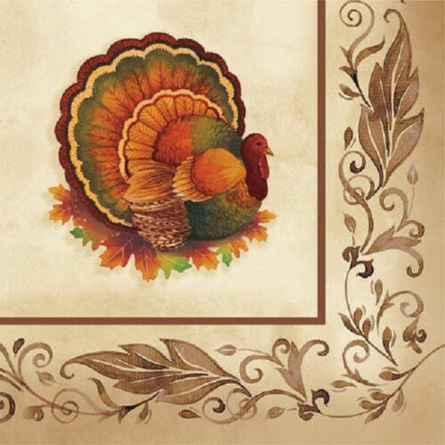 Thanksgiving Traditional Feast Turkey Beverage Napkins 16 ct Party Banquet