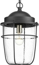 1-Light Outdoor Hanging Lantern Clear Seeded Glass Nautical-Inspired Black - $161.45