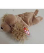 Ty Beanie Babies NWT Spunky the Cocker Spaniel Dog Retired - $9.95