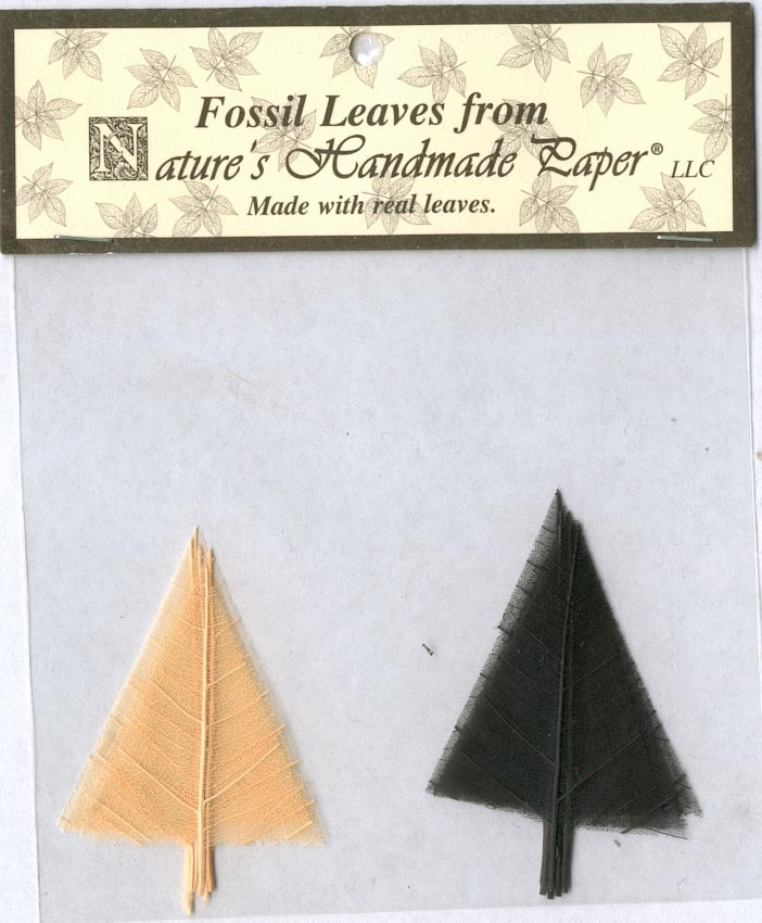 10 Fossil Leaves - Tiny Trees - Black & White