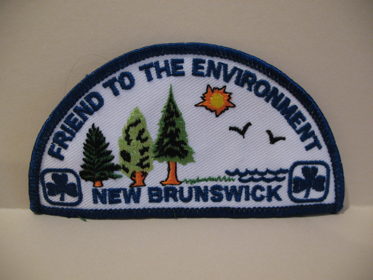 Primary image for New Brunswick Girl Guides Souvenir Badge Patch Crest