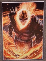 Marvel Ghost Rider Glossy Print 11 x 17 In Hard Plastic Sleeve - $24.99