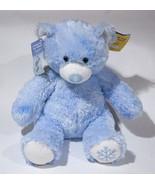NWT BUILD A BEAR FRIEND FUR ALL SEASONS WINTER BLUE SNOWFLAKE BEAR & PIN... - $29.69