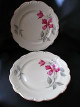 "2 Rosenthal Pompadour Beatrice Dinner Plates 10 3/8"" - $39.99"
