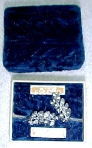Primary image for vintage screwback Czechoslavakian earrings with original box & names